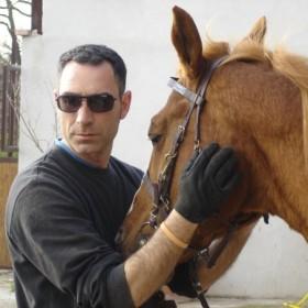 Intervista a Dario Di Gioia